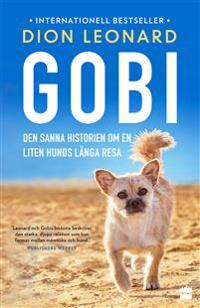 Gobi : den sanna historien om en liten hunds långa resa