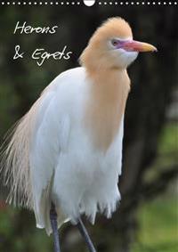 Herons & Egrets 2019