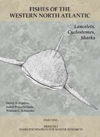 Lancelets, Cyclostomes, Sharks - Part 1