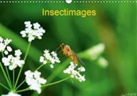 Insectimages 2019