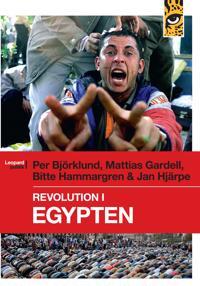 Revolution i Egypten