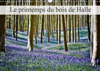 Le printemps du bois de Halle 2019