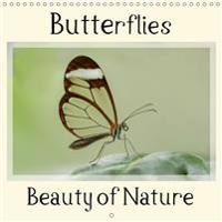 Butterflies Beauty of Nature 2019