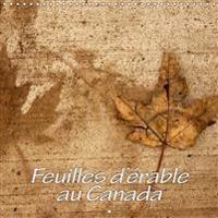 Feuilles d'erable au Canada 2019