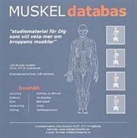 Muskeldatabas : studiematerial för dig som vill veta mer om kroppens muskler