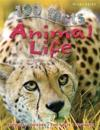 100 Facts Animal Life: Take a Walk on the Wildside and Learn about the Extraordinar