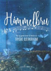 Himmelbru - Trygve Bjerkrheim pdf epub