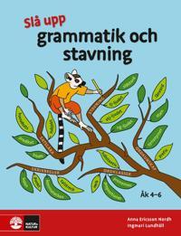 Slå upp grammatik och stavning åk 4-6