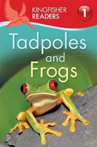 Kingfisher Readers: Tadpoles and Frogs (Level 1: Beginning to Read)