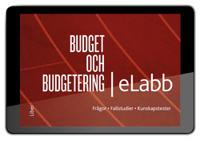 budget och budgetering