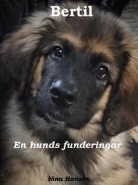Bertil - en hunds funderingar