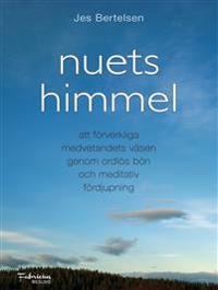 Nuets himmel : att förverkliga medvetandets väsen genom ordlös bön och meditativ fördjupning