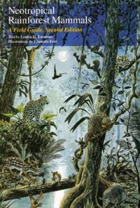 Neotropical Rainforest Mammals