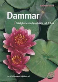 Dammar : trädgårdsexpertens bästa råd & tips