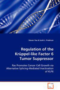 Regulation of the Kruppel-like Factor 6 Tumor Suppressor