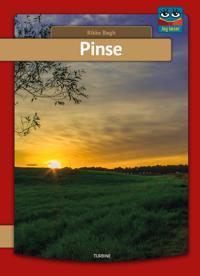 Pinse