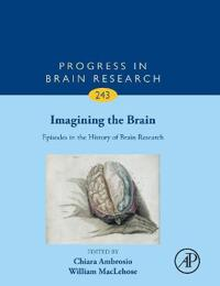 Imagining the Brain: Episodes in the History of Brain Research