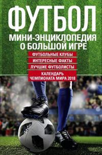 Futbol. Mini-entsiklopedija o bolshoj igre