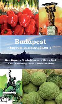 Budapest bortom turiststråken 3