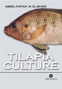Tilapia Culture