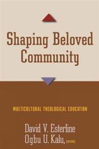 Shaping Beloved Community