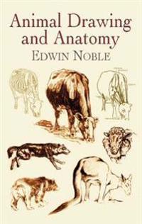 Animal Drawing and Anatomy