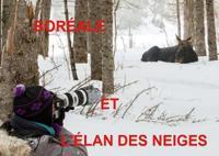 BOREALE ET L'ELAN DES GLACES