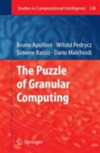 Puzzle of Granular Computing