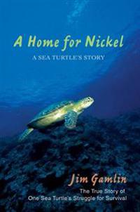 Home for Nickel