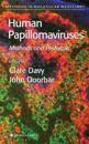 Human Papillomaviruses