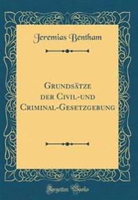 Grundsätze der Civil-und Criminal-Gesetzgebung (Classic Reprint)