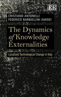 The Dynamics of Knowledge Externalities