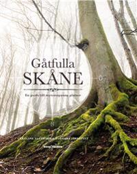 Gåtfulla Skåne : En guide till mytomspunna platser