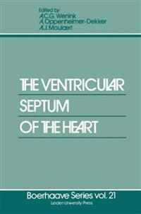 The Ventricular Septum of the Heart