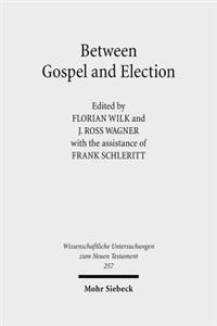 Between Gospel and Election: Explorations in the Interpretation of Romans 9-11