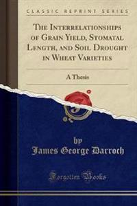 The Interrelationships of Grain Yield, Stomatal Length, and Soil Drought in Wheat Varieties