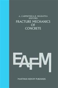 Fracture mechanics of concrete: Material characterization and testing