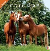 Friends - Pferde 2012. Broschurkalender