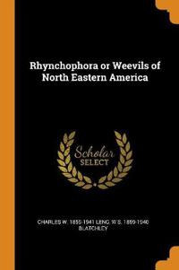 Rhynchophora or Weevils of North Eastern America