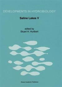 Saline Lakes V