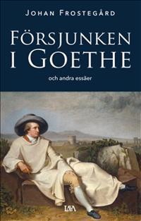 Försjunken i Goethe och andra essäer