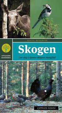 Skogen - Kjetil Bevanger   Ridgeroadrun.org