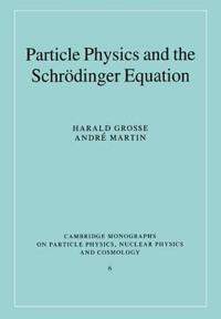 Particle Physics and the Schroedinger Equation