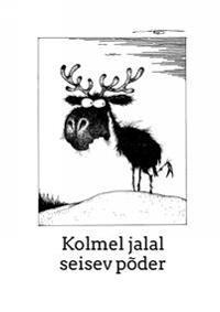 7bc59cb3b7b Estonian knitting 2. socks and stockings - Anu Pink - bøker ...