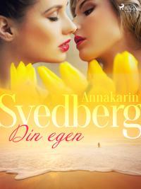 Din egen - Annakarin Svedberg pdf epub