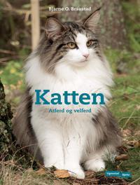 Katten - Bjarne O. Braastad pdf epub