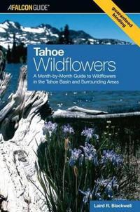 Tahoe Wildflowers