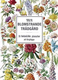Min blomstrande trädgård: 35 botaniska planscher att färglägga