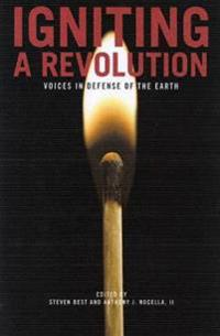 Igniting a Revolution