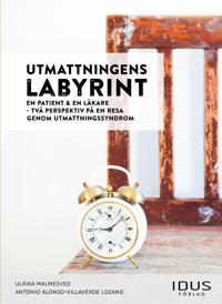 Utmattningens labyrint : en patient & en läkare - två perspektiv på en resa genom utmattningssyndrom